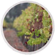 Vineyard View Round Beach Towel
