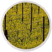 Vineyards Full Of Mustard Grass Round Beach Towel