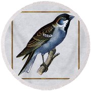 Vintage English Sparrow Square Round Beach Towel