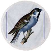 Vintage English Sparrow Vertical Round Beach Towel