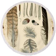 Vintage Feather Study-a Round Beach Towel
