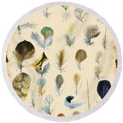 Vintage Feather Study-c Round Beach Towel