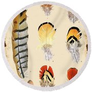 Vintage Feather Study-d Round Beach Towel