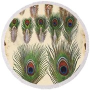 Vintage Feather Study-jp2084 Round Beach Towel