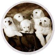 Vintage Festive Puppies Round Beach Towel