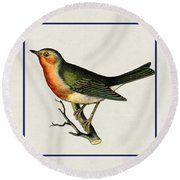Vintage Robin Square Round Beach Towel