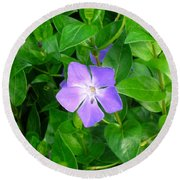 Violet Herbaceous Periwinkle Round Beach Towel