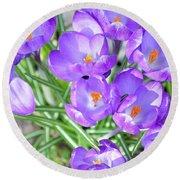Violet Lilies Round Beach Towel