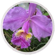 Violet Orchid Round Beach Towel
