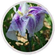 Violet Striped Iris Round Beach Towel