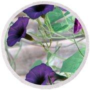 Violet Vine - Photopower 326 Round Beach Towel