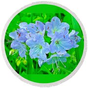Virginia Waterleaf Near Alamo-michigan Round Beach Towel