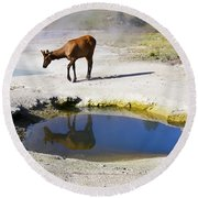 Visitor At West Thumb Basin Round Beach Towel