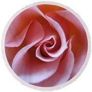 Vivacious Pink Rose 3 Round Beach Towel