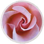 Vivacious Pink Rose 5 Round Beach Towel