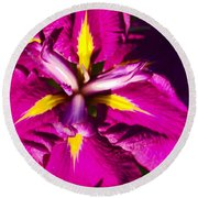 Vivid Iris Round Beach Towel