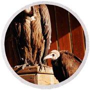 Vulture Male Round Beach Towel