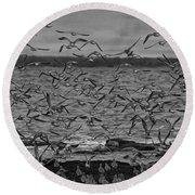 Wading Birds-black And White Round Beach Towel