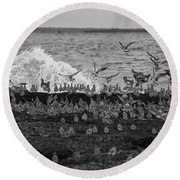 Wading Birds-black And White V2 Round Beach Towel