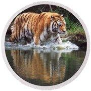 Wading Tiger Round Beach Towel