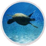 Waimea Turtle Round Beach Towel