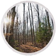Walk In The Woods2 Round Beach Towel