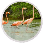 Walking Flamingos Round Beach Towel