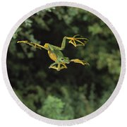 Wallaces Flying Frog Round Beach Towel