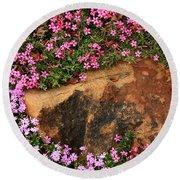 Wallflowers 3 Round Beach Towel
