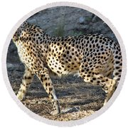 Wandering Cheetah Round Beach Towel