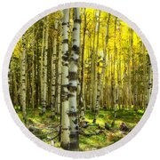 Wandering In The Woods  Round Beach Towel