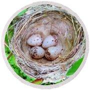 Warbler Nest Round Beach Towel