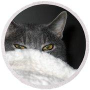 Warm Kitty Round Beach Towel