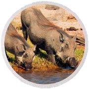 Warthog Family Round Beach Towel