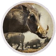 Warthog Profile Round Beach Towel