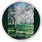 Washington Dc Cherry Blossoms Round Beach Towel