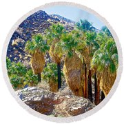 Washingtonian Fan Palm Grove Along Lower Palm Canyon Trail Near Palm Springs-california  Round Beach Towel