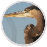 Watchful Heron Round Beach Towel