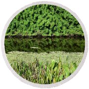 Water And Green Round Beach Towel