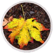 Water Colored Leaf - Autumn Round Beach Towel