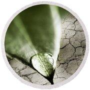 Water Drop On Green Leaf Round Beach Towel