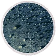 Water Droplets Close-up View  Round Beach Towel