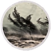 Water Fronds Round Beach Towel