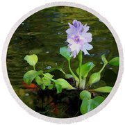 Water Hyacinth Float Round Beach Towel