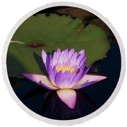 Water Lilies Monet Round Beach Towel