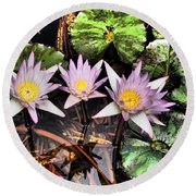 Water Lilies Water Drop And Reflection In Water Round Beach Towel