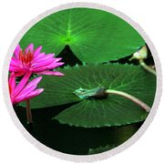 Water Lillies In Pink Round Beach Towel