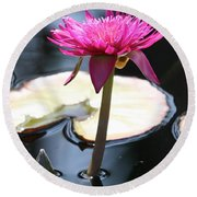 Pink Water Lily Round Beach Towel