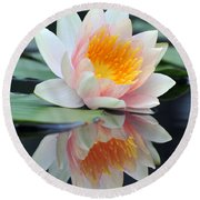 water lily 45 Water Lily with Reflection Round Beach Towel