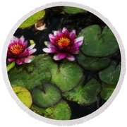 Water Lily Acanthius Round Beach Towel